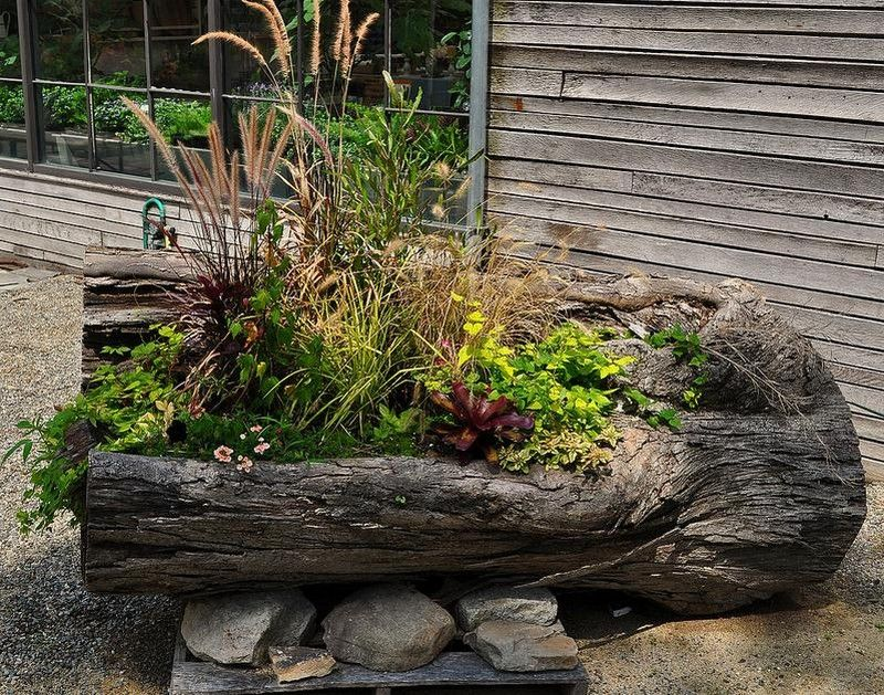 Upcycled Tree Stump And Log Ideas Diy planters outdoor