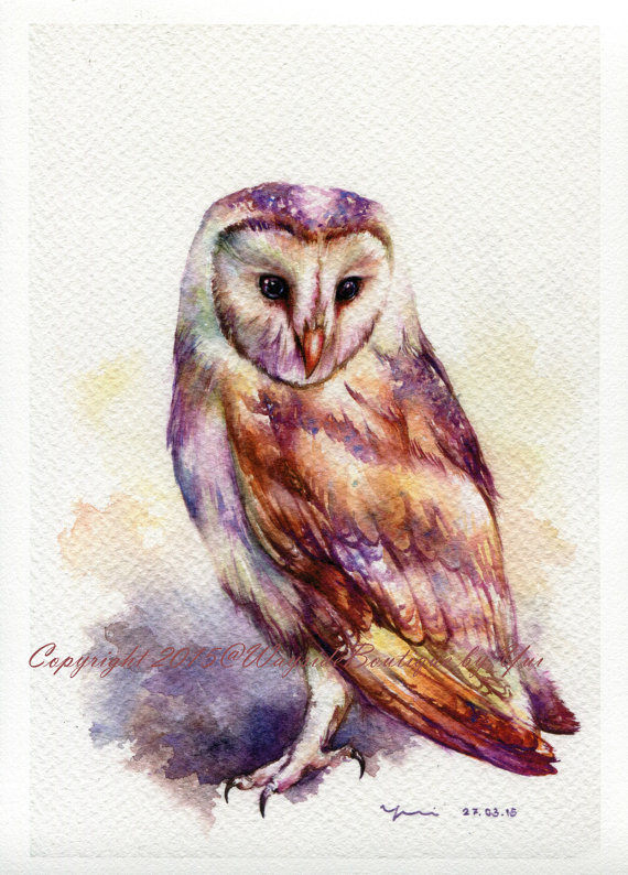 Print The Owl Watercolor Painting 7 5 X 11 Eulen Aquarell