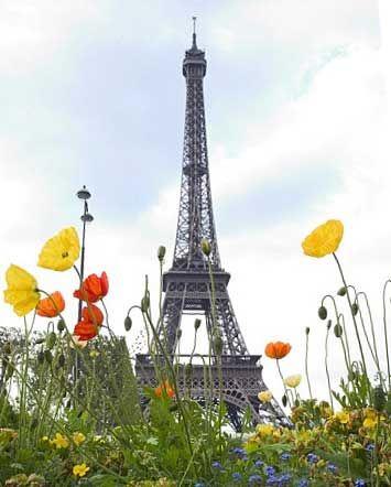 Paris in Summer @Indie Lee #SummerEssentials