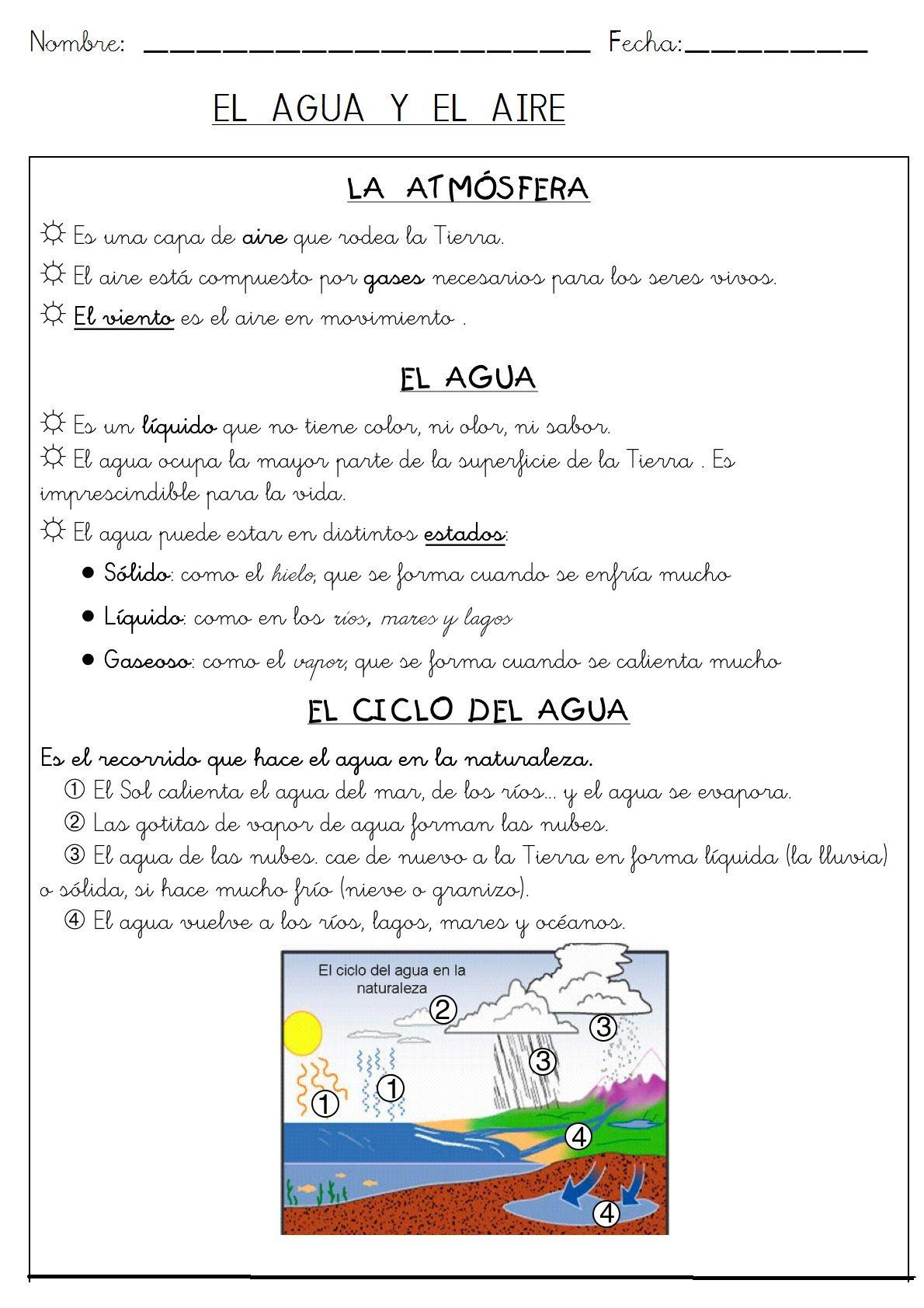 FICHARESUMEN SOBRE EL CICLO DELA GUA Kid science, Ciclo