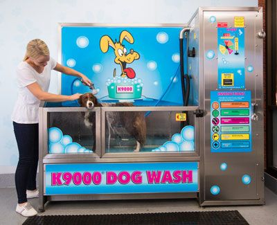 Self dog wash melbourne google search all about bizness self dog wash melbourne google search solutioingenieria Images
