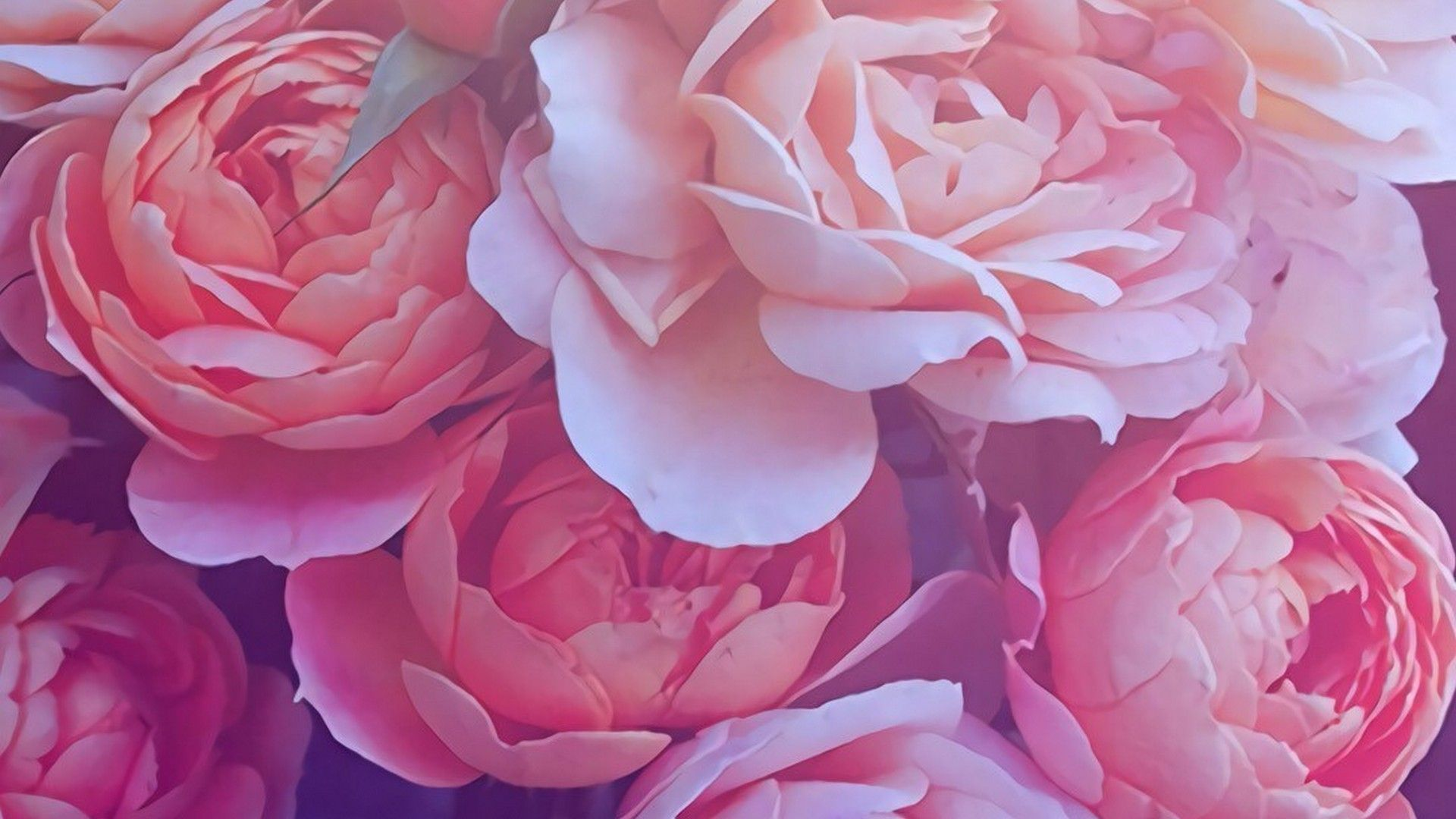 Gold rose desktop backgrounds wallpaper mac wallpaper - Rose desktop wallpaper hd ...
