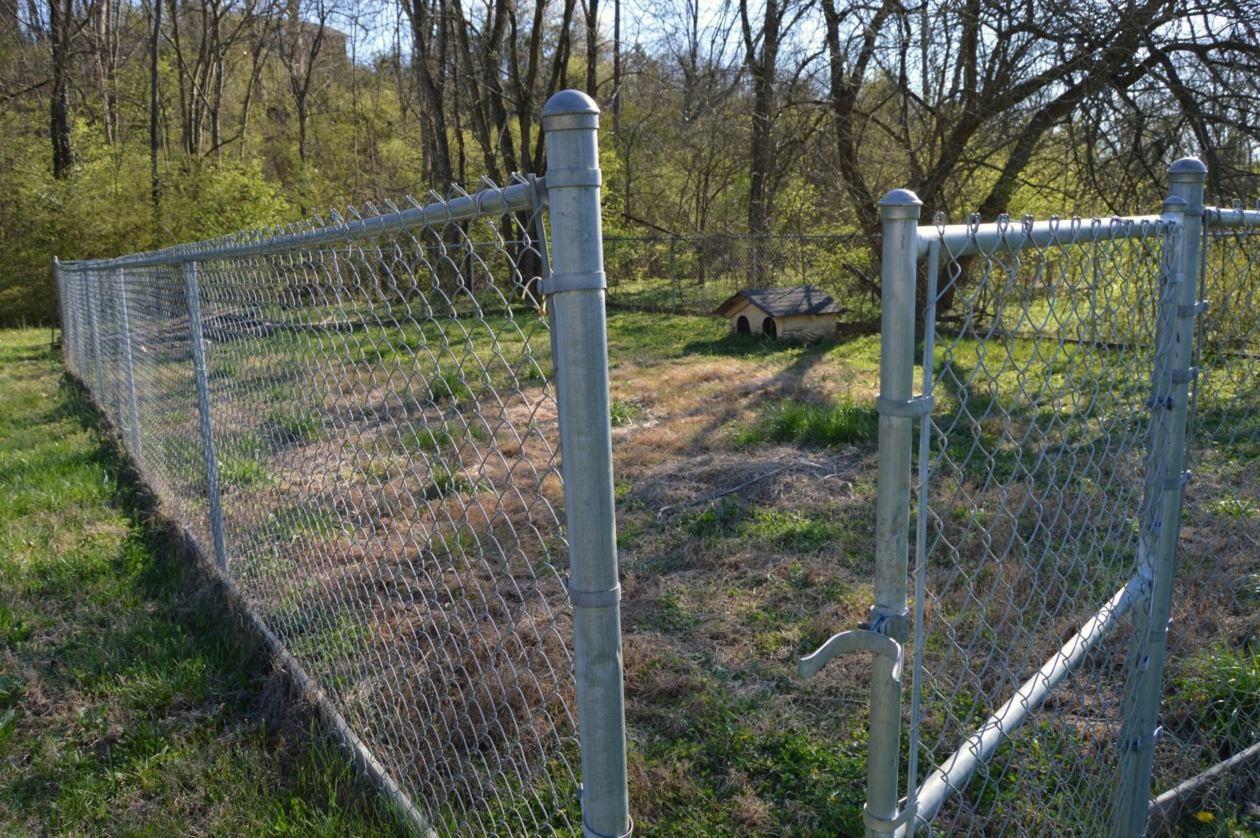 Chain link fence makeover option diy chain link fence