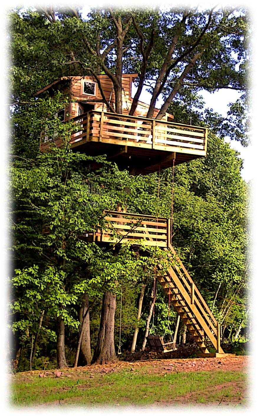 A Two Level Adult Tree House Everything Pinterest
