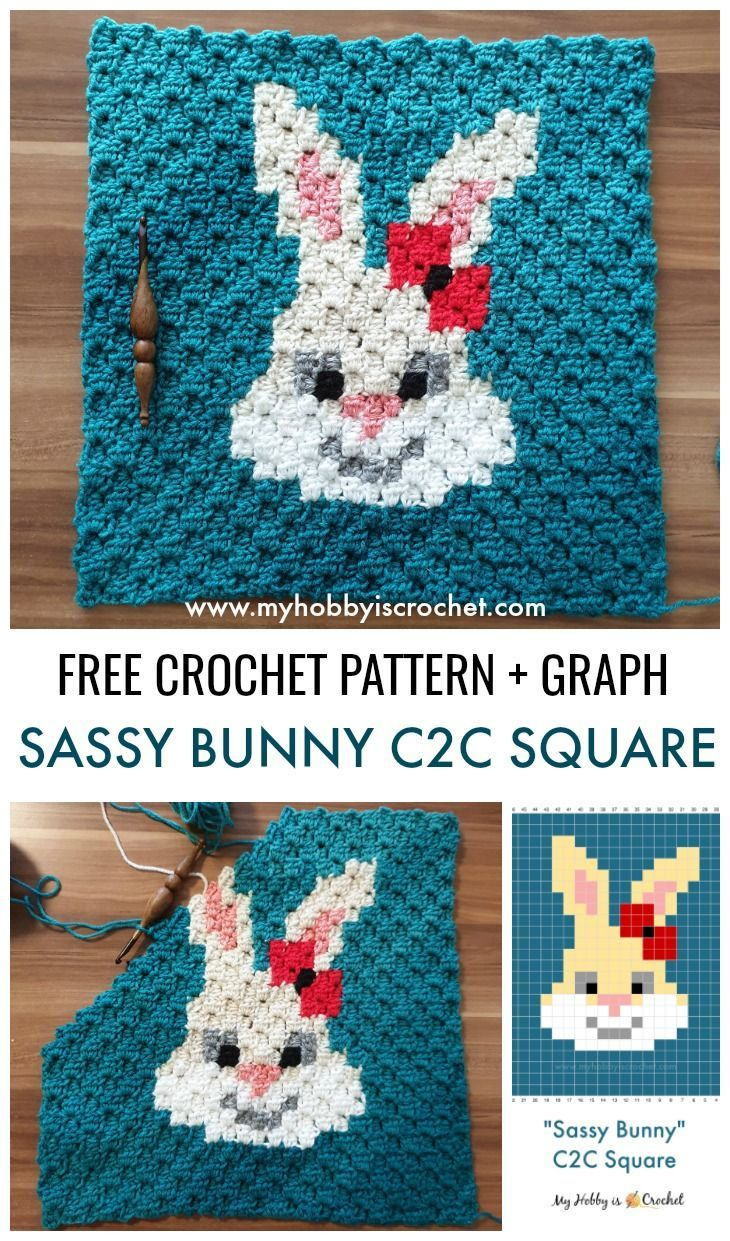 Sassy Bunny C2C Square - Free Crochet Pattern: Written Instructions + Graph #crochetbunnypattern