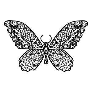 Schmetterlinge | Mandalas zum ausdrucken, Ausmalbilder ...