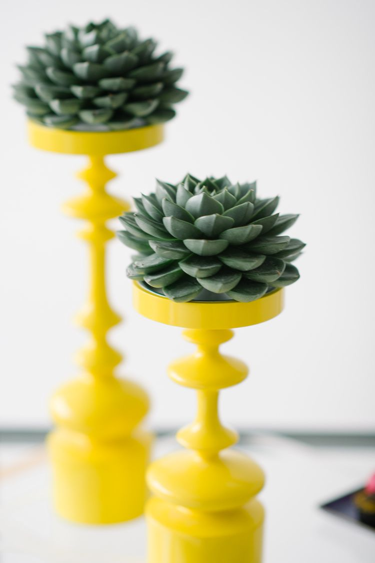 DVF Inspired Bridesmaids Party Styled | Succulents on Yellow Candlesticks | Concept, Design and Planning: @colorpopevents, Photography: @brklynview