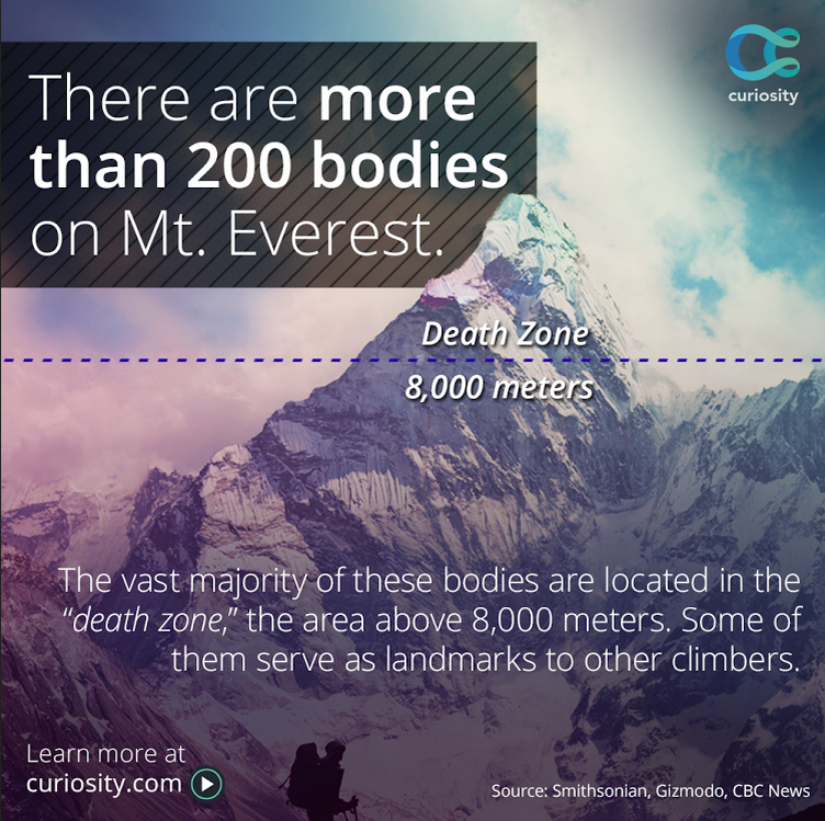 1996 mt. everest disaster essay The mount everest case can be summed up as inefficient distribution of leadership, skills and resources in the face of imminent natural disaster teamwork consist of interdependency, mutual accountability and understanding common goals and working with respect to each other's complementary skills.