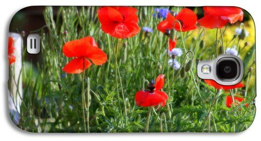 """Red Poppies And Blue Corn Flowers"" photography by Kay Novy. Galaxy S4, also have iphone cases. http://pixels.com/products/red-poppies-and-blue-corn-flowers-kay-novy-galaxys4-case-cover.html"