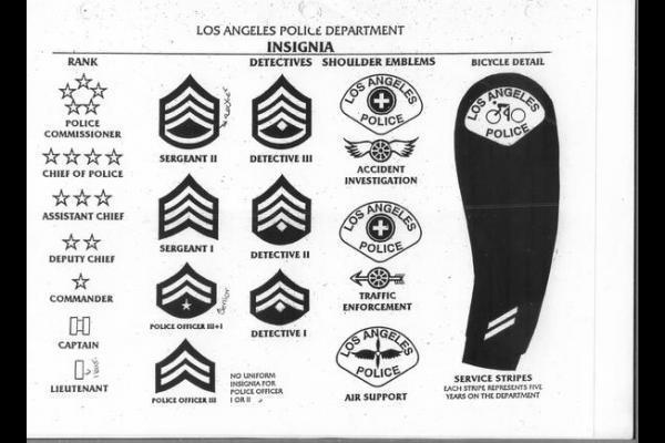 Police Department Ranks Google Search Police Sergeant Los Angeles Police Department Police Department