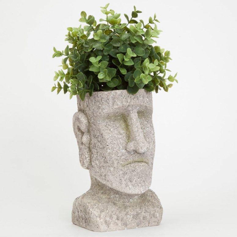 """2 Plantas Vivas-Pote De 3.5/"""" Alecrim-Vermelho"""