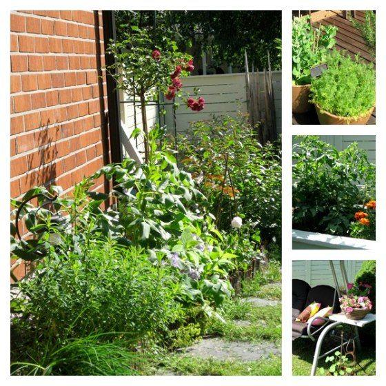 garden/ Boheme Interior