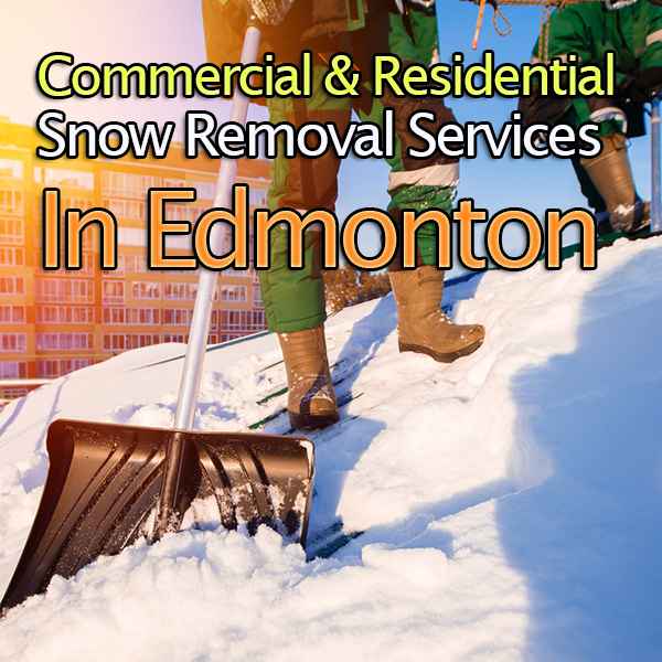 White 'N Green Inc. is a full-service maintenance company specializing in professional lawn care and snow removal. We offer award-winning services such as lawn maintenance, spring/fall cleanups and snow removal in Edmonton and Sherwood Park area. #SnowRemovalServices #SnowRemoval #LawnCare #Landscaping #Edmonton