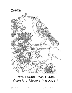 Oregon Printables Oregon State Bird and Flower Coloring Page