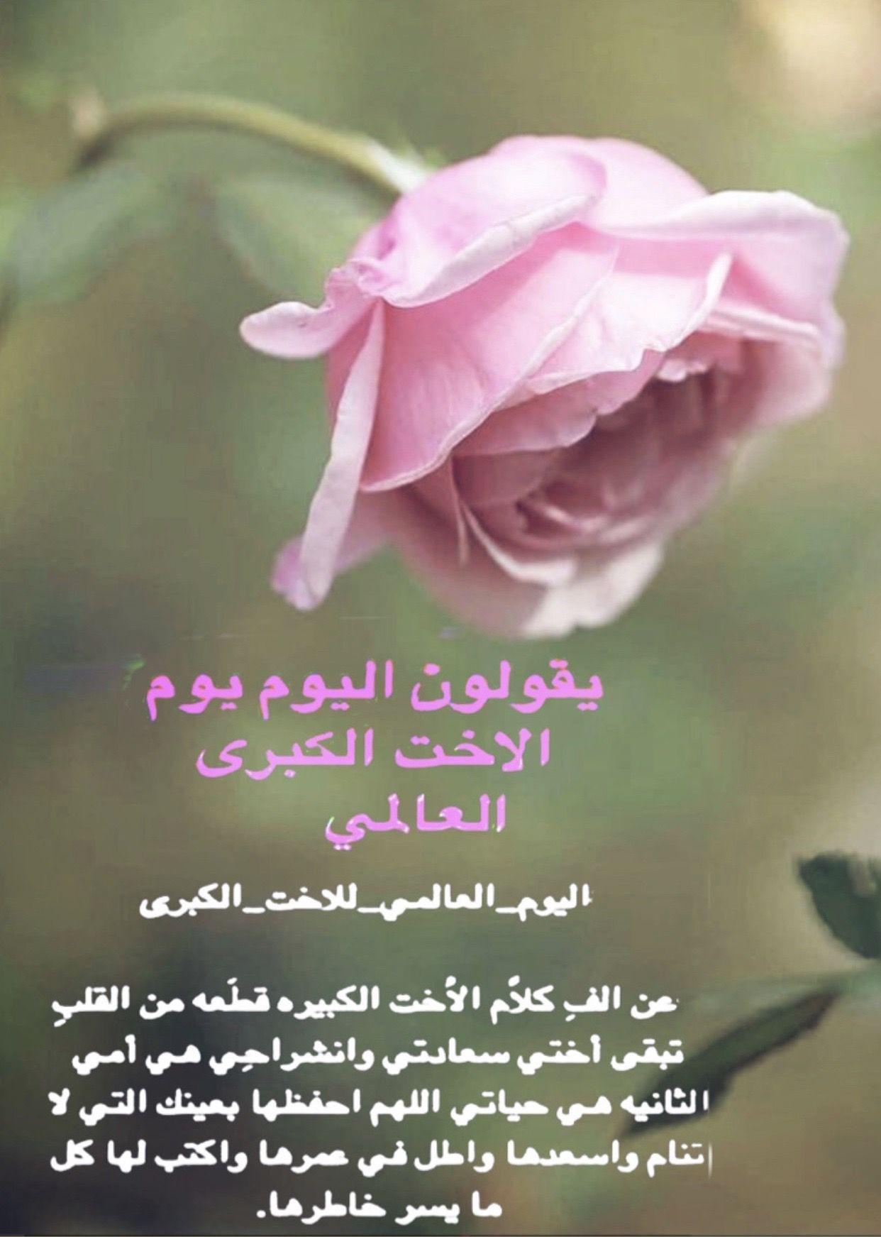 Pin By Foooz On شعر وشعور Plants Rose Flowers
