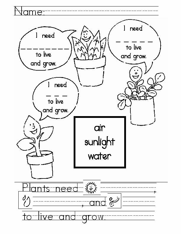 Have Students Complete This Activity And Color It Unit Content