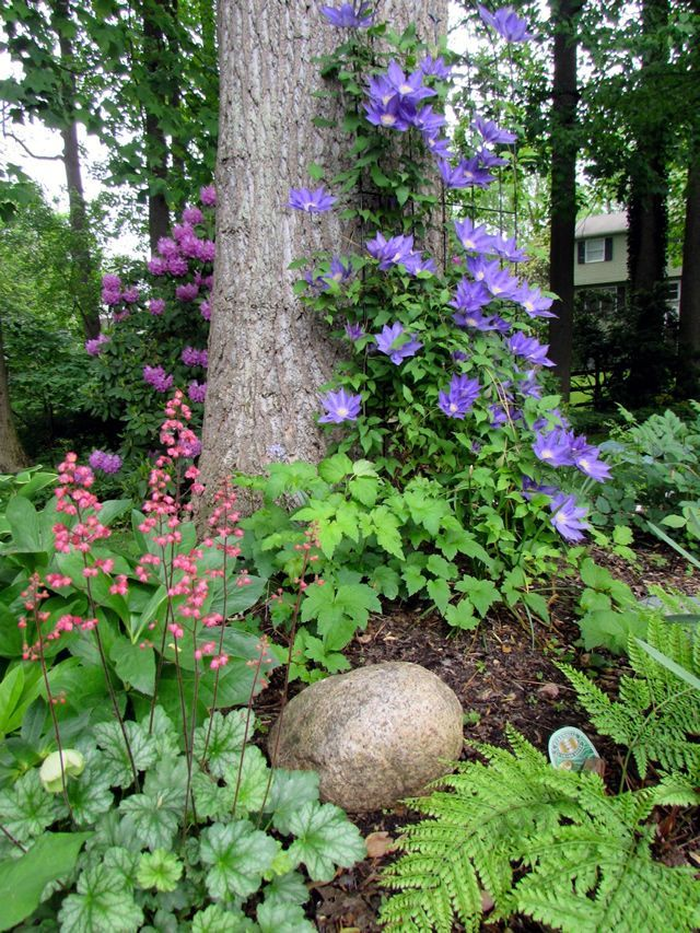 Photo of Der facettenreiche Gärtnergarten
