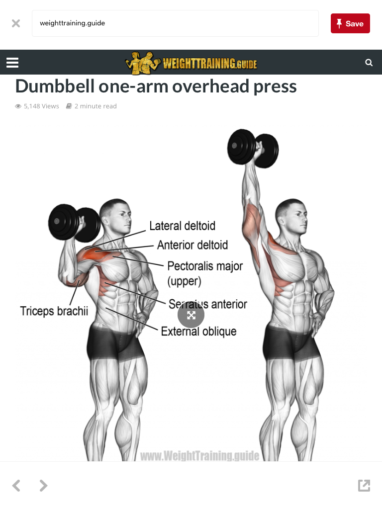 73137dda1 Dumbbell Workout, Deltoid Workout, Dumbbell Exercises, Serratus Anterior  Workout, Muscle Fitness,