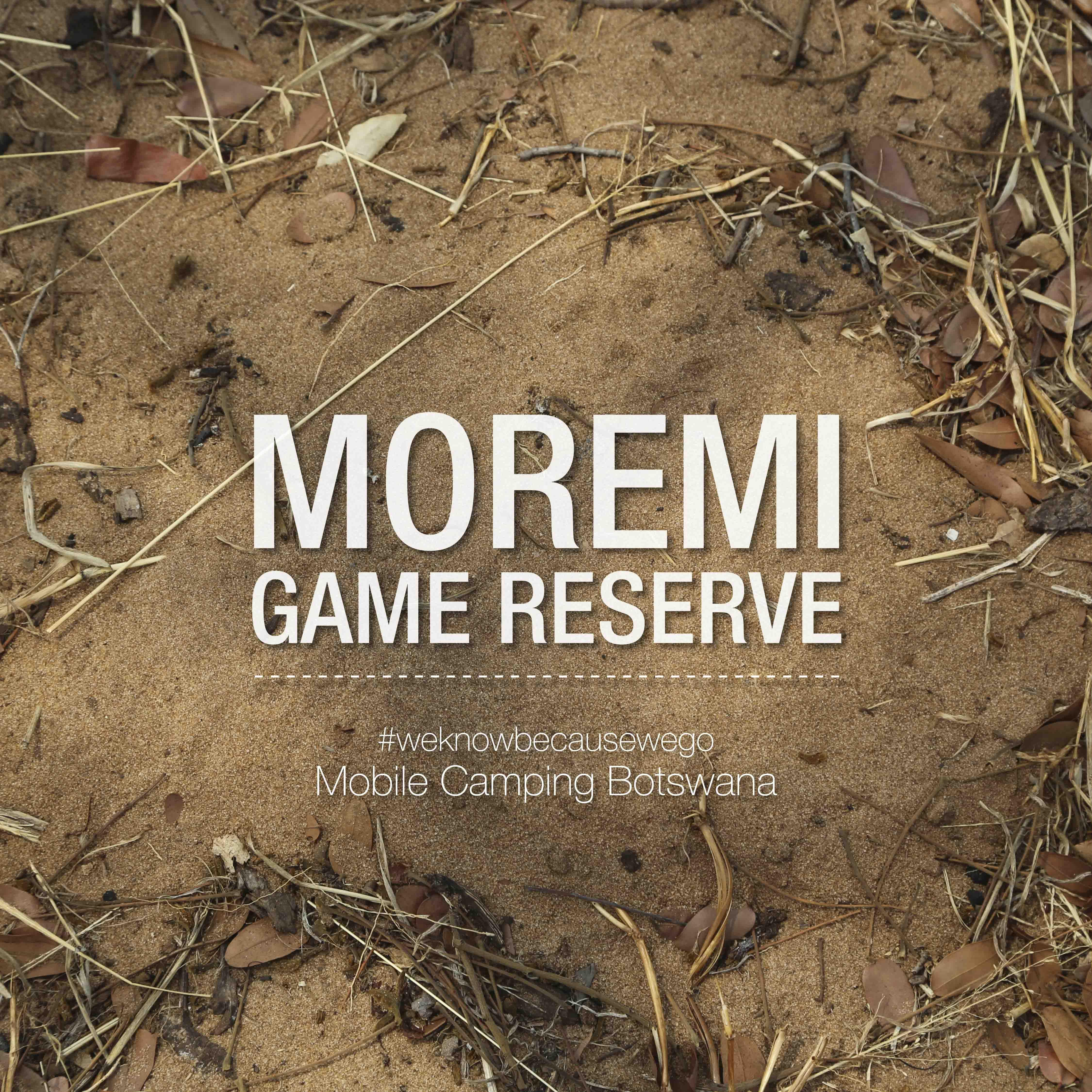 Arriving at Moremi Game Reserve Botswana. Africa