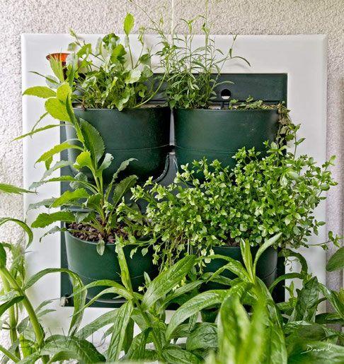 Flowall vertikale g rten wandbegr nung wandbepflanzung wandpflanzer wildstauden vertical - Vertikale wandbepflanzung ...