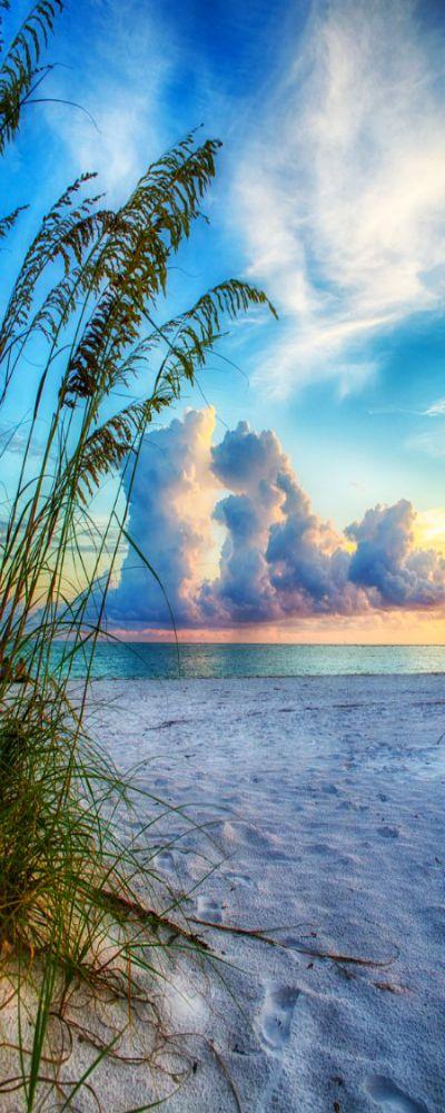 Sarasota Sunset ☼
