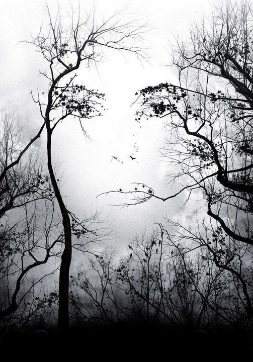 The face of mother nature?