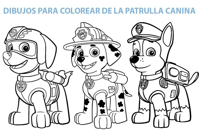 Dibujos De La Patrulla Canina Para Colorear Paw Patrol Dibujos