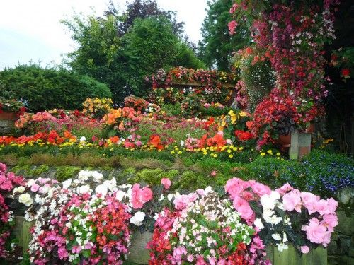 Flores del jard n para hacer un ramo de novia foto - Ideas para hacer un jardin ...