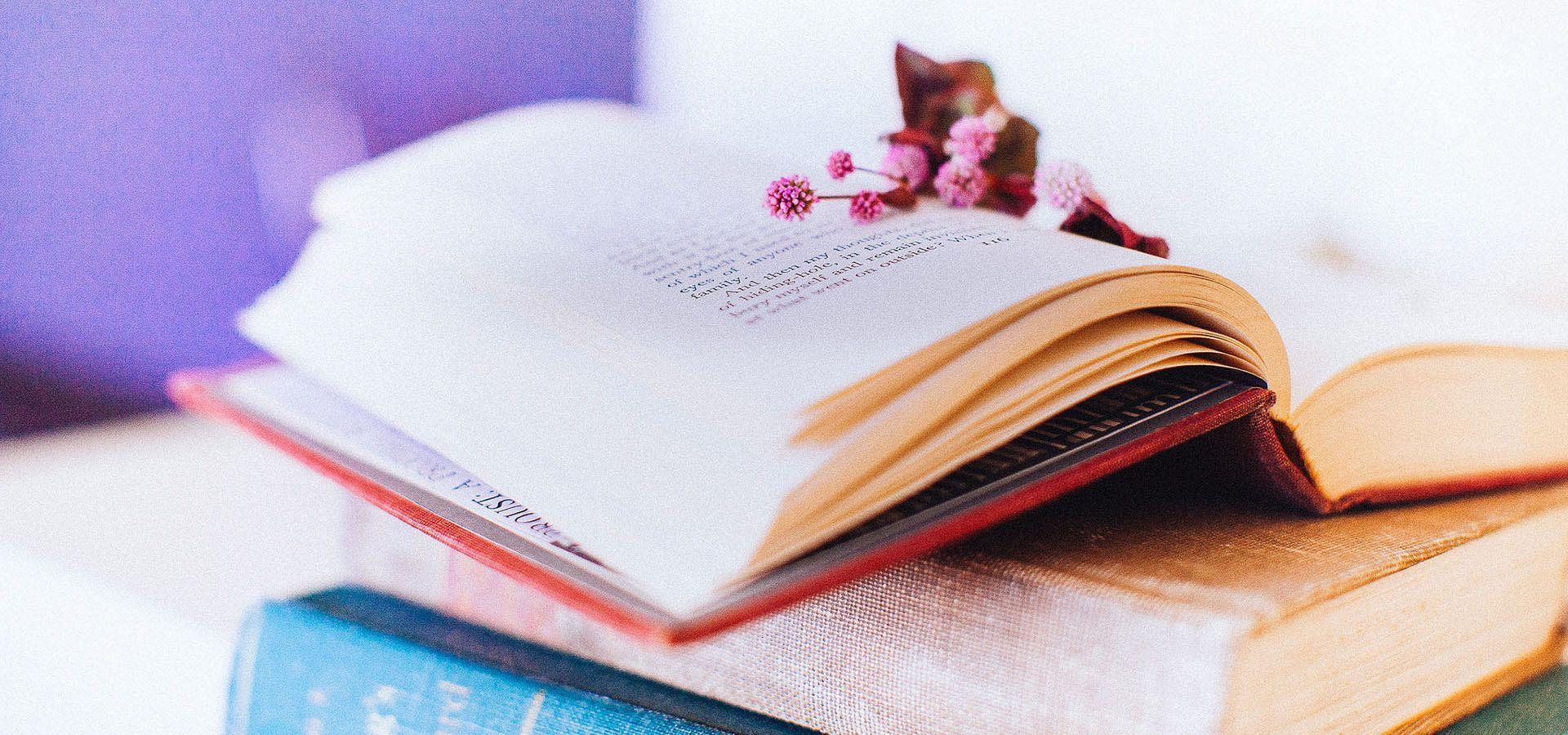 الكتب الأدبية الأوروبية خلفية جديدة Card Holder Cards