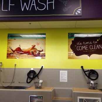 Self serve dog wash unleashed by petco yelp grooming self serve dog wash unleashed by petco yelp solutioingenieria Images