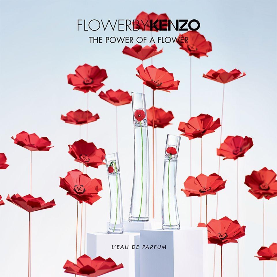 KENZO // Flower By Kenzo on Behance | Kenzo flower, Flowers, Paper flowers
