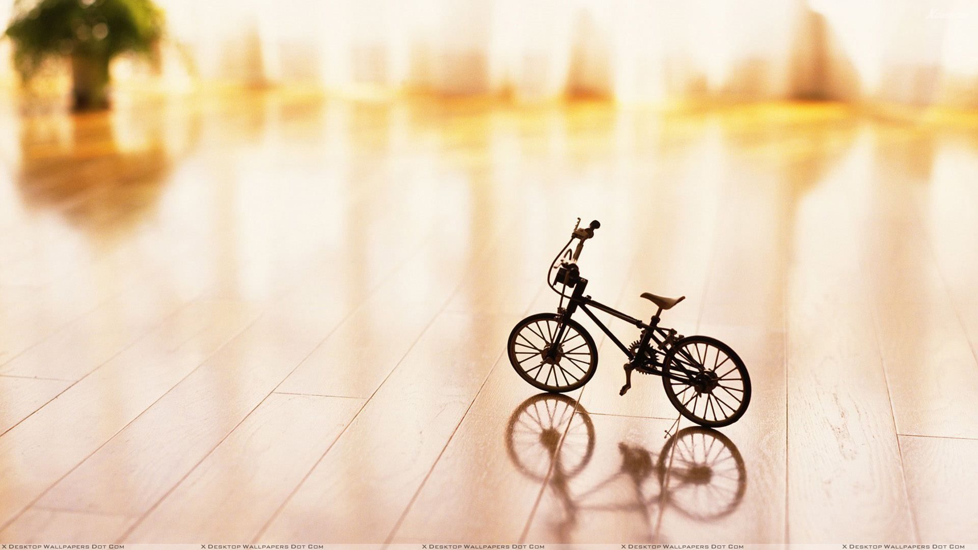 small cycle on table