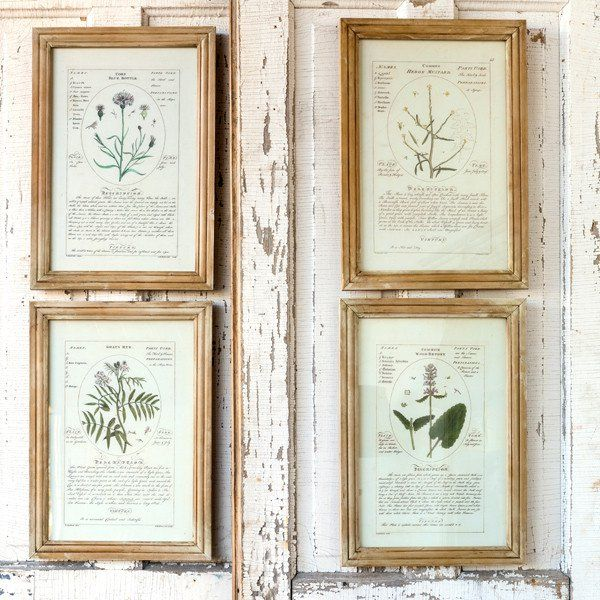 Hang our Framed Botanical Art Prints in your living room dining