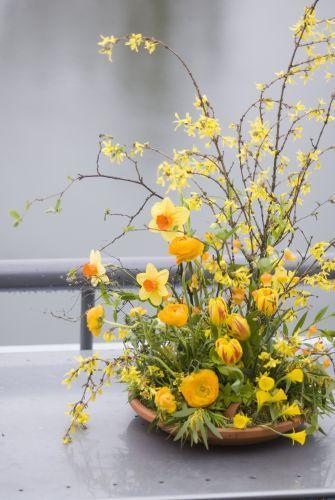 daffodils in flower arrangements forsythia tulips daffodils ranunculus franoise weeks - Forsythia Arrangements