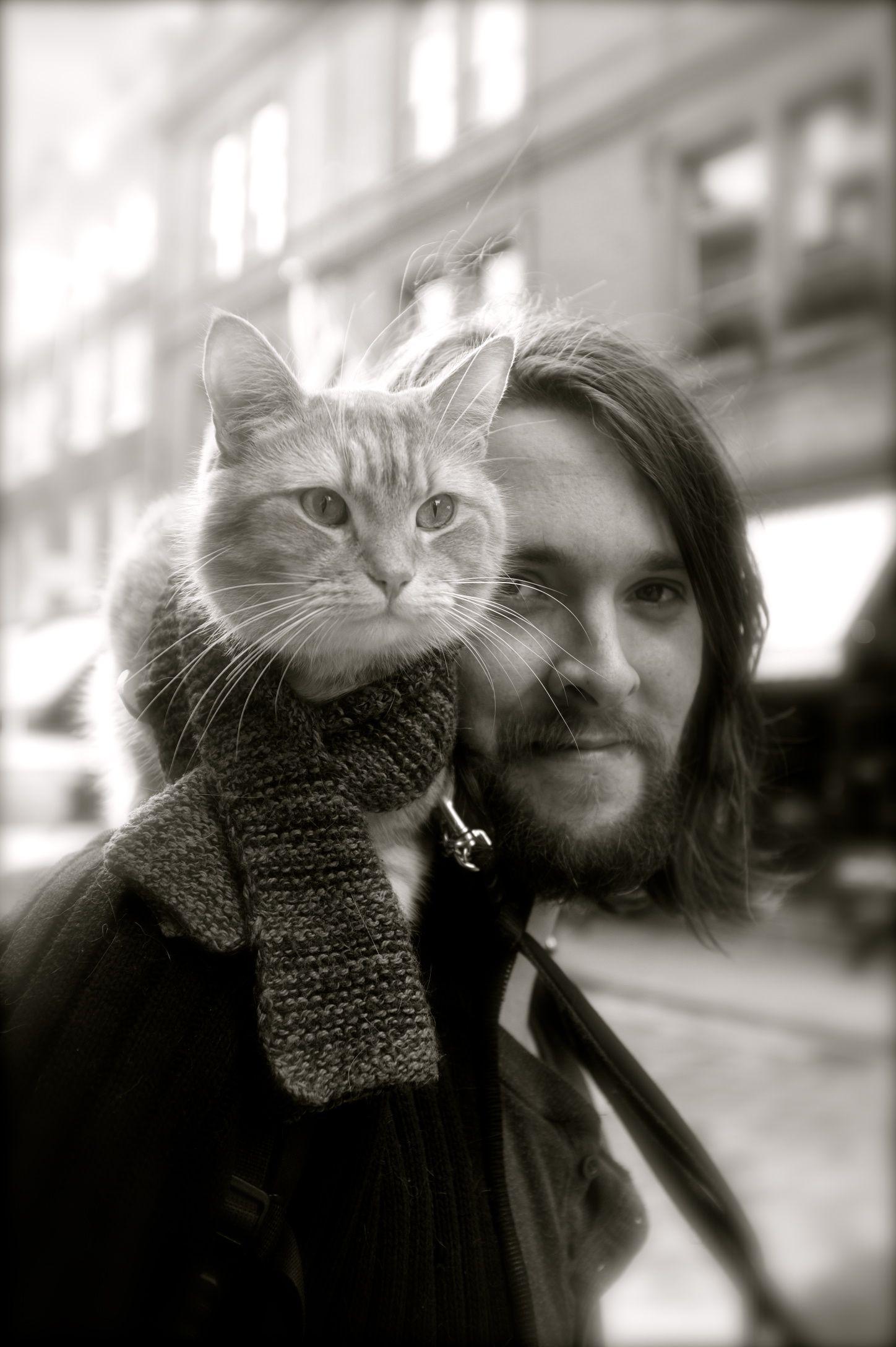 Bob the cat. Cat Named Bob with his human James Bowen