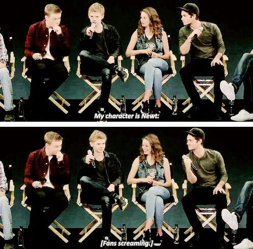 The whole fandom's reaction towards Newt in one picture #MazeRunner #tmr #tmrcast