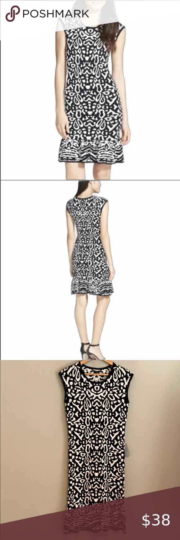 New Felicity Coco Selia Black And White Dress Black N White Dress White Dress Clothes Design [ 1740 x 580 Pixel ]