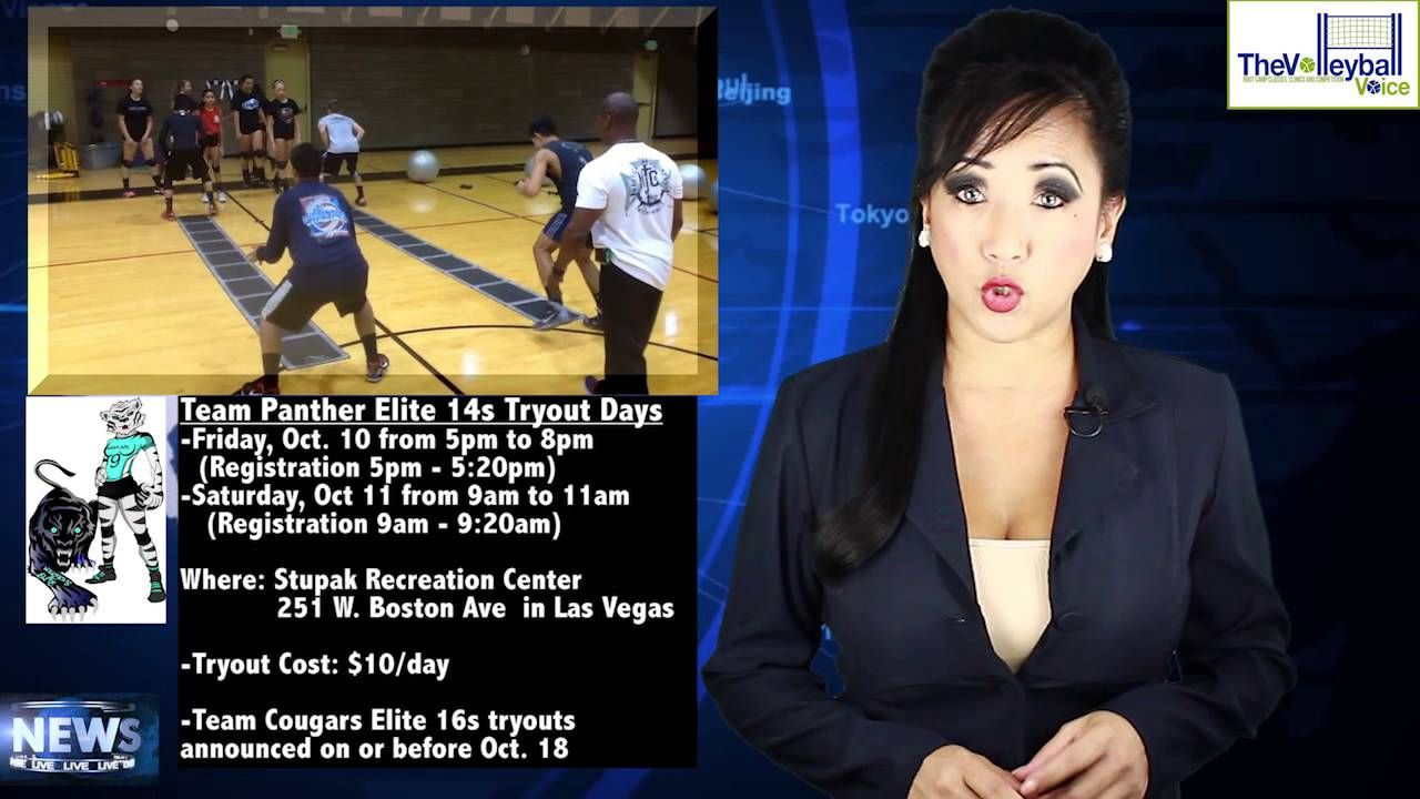 Volleycats Elite 14s Tryouts Promo Las Vegas Elite