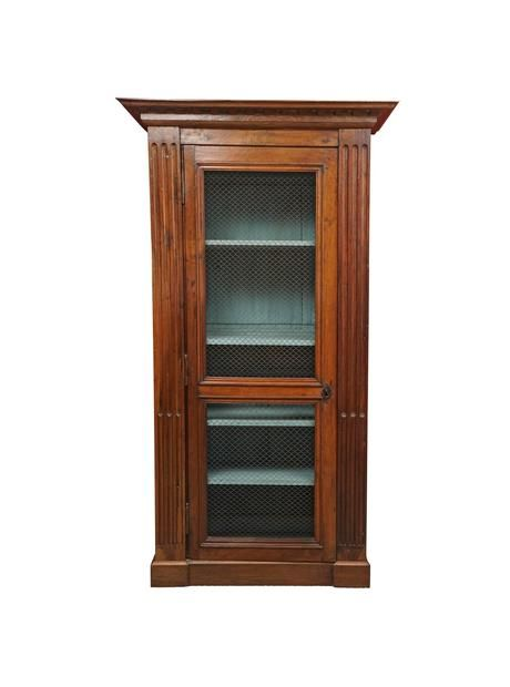 Wonderful Piece With A Mesh Door And Painted Interior While It Makes A Strong Statement And Offers Ample Storage Or D Mesh Door Bookcase 19th Century Bookcase