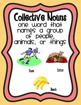 Image result for collective nouns poster