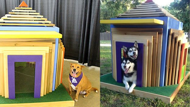Custom Home Designers Have Created Seven Deluxe Dog Houses You