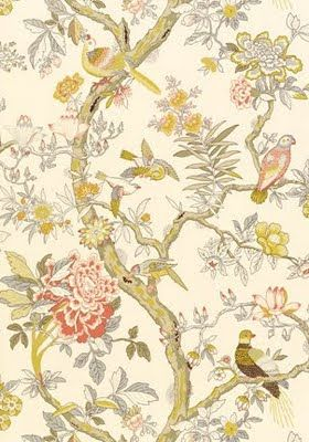 Thibaut Papagayo Thibaut wallpaper, Bird wallpaper