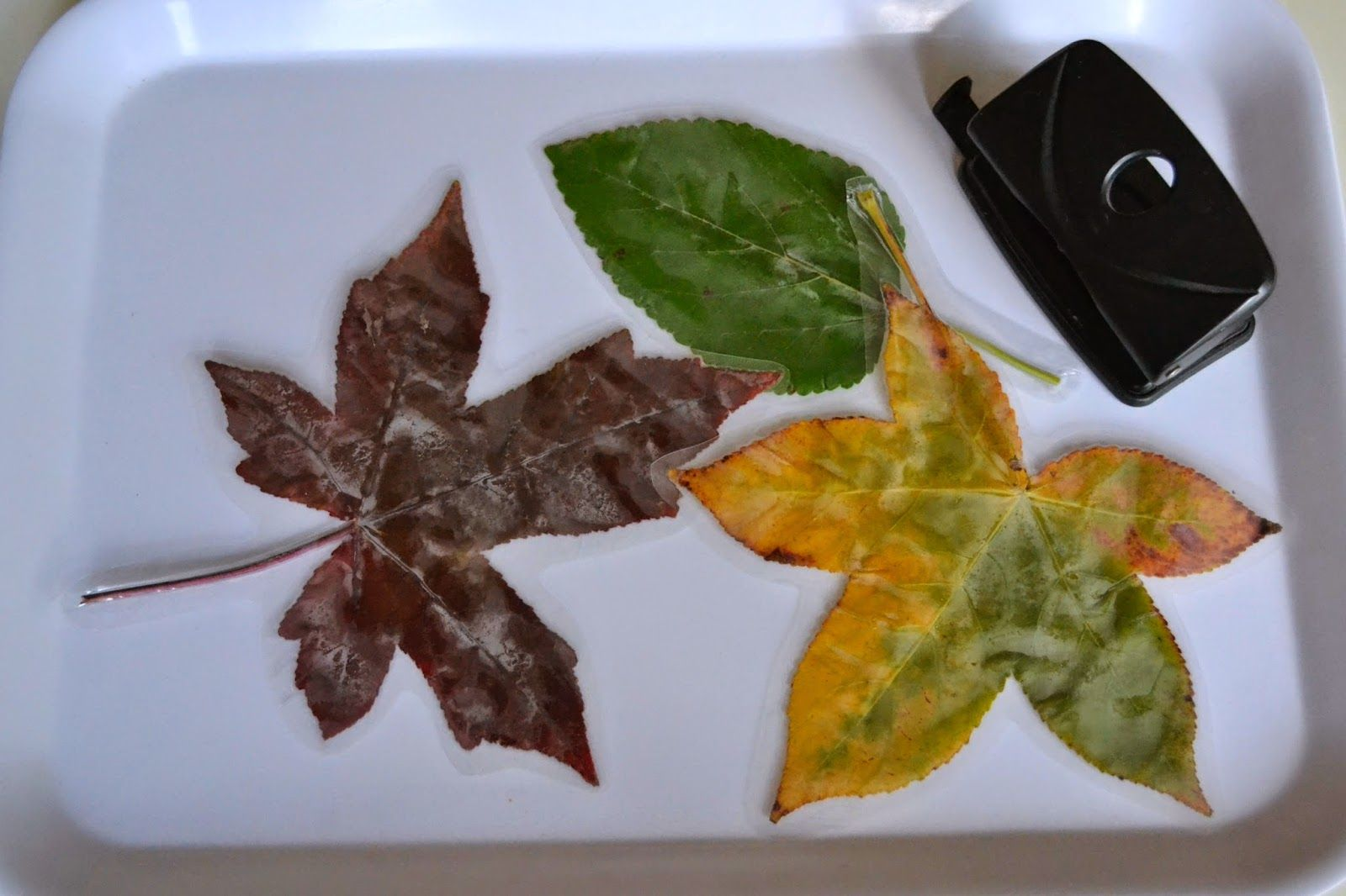 Autumn Leaf Threading