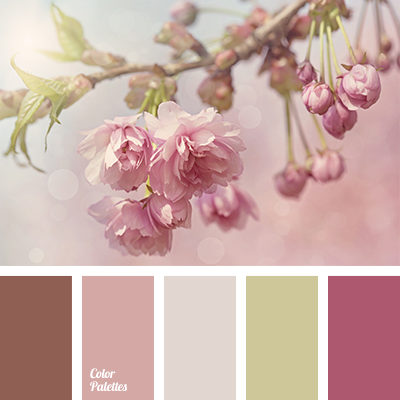 Color Palette #1285 | Pastel pink, Chocolate brown and Cherry blossoms
