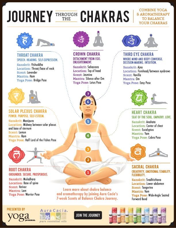 Journey Through the Chakras: Scents to Deepen Your Practice ...