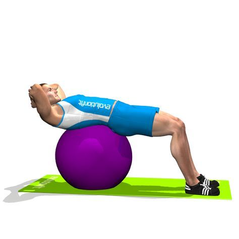CRUNCH ON STABILITY BALL INVOLVED MUSCLES DURING THE TRAINING ABDOMINALS