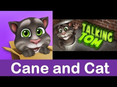 Baby Tom cat playing Cat and Cane - YouTube
