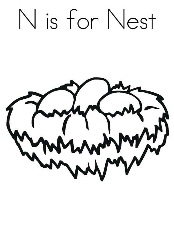 nest coloring pages Bird Nest, : N is for Bird Nest Coloring Pages | MFW Kindergarten  nest coloring pages
