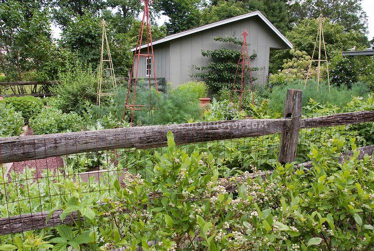 garden fence - Google-søk