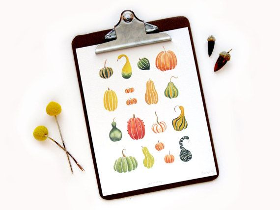 Fall Pumpkin Squash Gourd Collection  Original by SketchyNotions